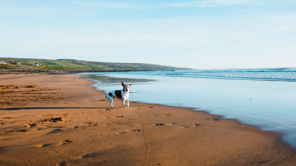 Pláž poblíž Clifdenu